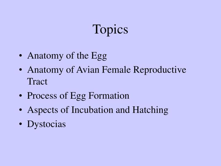 PPT - The Avian Egg Structure, Production, Function PowerPoint ...