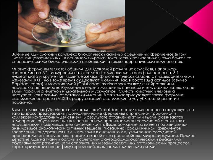 Змеиные яды- сложный комплекс биологически активных соединений: ферментов (в том числе -пищеварительных)- в основном гидролаз, токсических полипептидов, ряда белков со специфическими биологическими свойствами, а также неорганических компонентов.