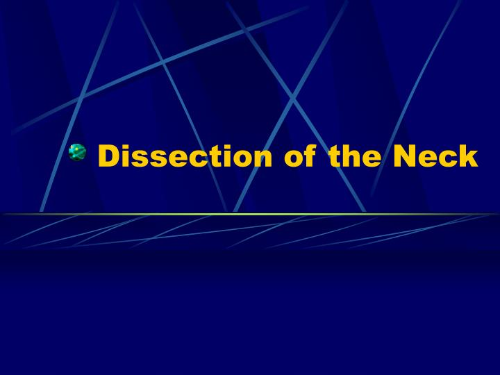 dissection of the neck n.