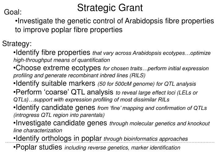 Strategic grant