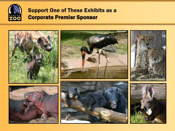 Support One of These Exhibits as a