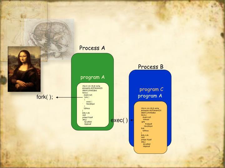 Process B
