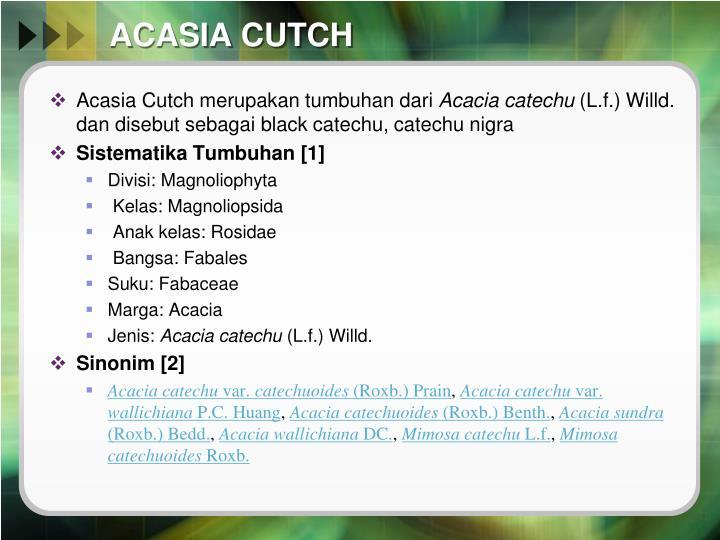 ACASIA CUTCH
