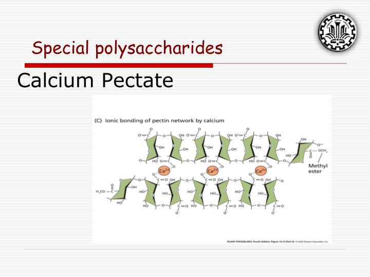 Calcium Pectate