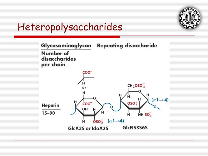 heteropolysaccharides These are also compound sugars and yield more than 10 molecules of monosaccharides on hydrolysis these may be further classified depending on whether the monosaccharide molecules produced as a result of the hydrolysis of polysaccharides are of the same type (homopolysaccharides) or of different types (heteropolysaccharides.