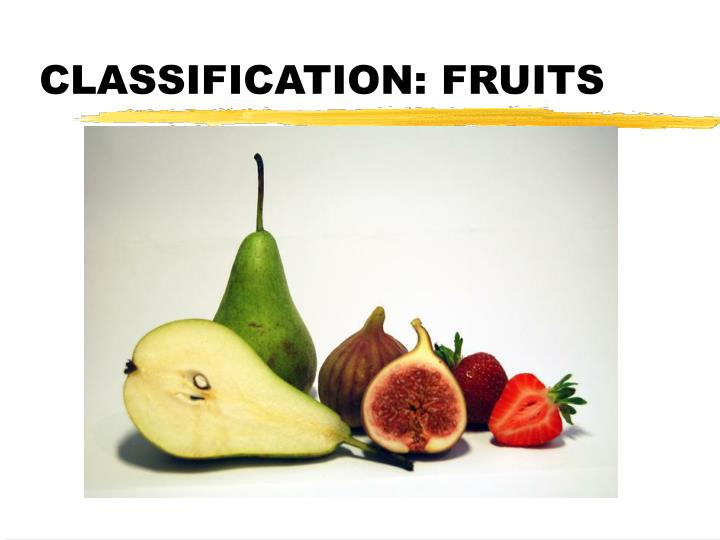 fruit and scientific classification When identifying an organism, familiar names — like human, fruit fly, or maple tree — are most likely the names you use however, each type of organism has a scientific name — humans are called homo sapiens , for example.
