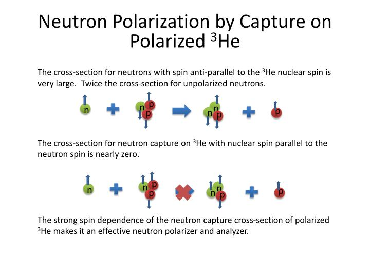 Neutron Polarization by Capture on Polarized