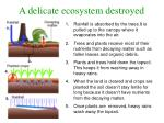 a delicate ecosystem destroyed