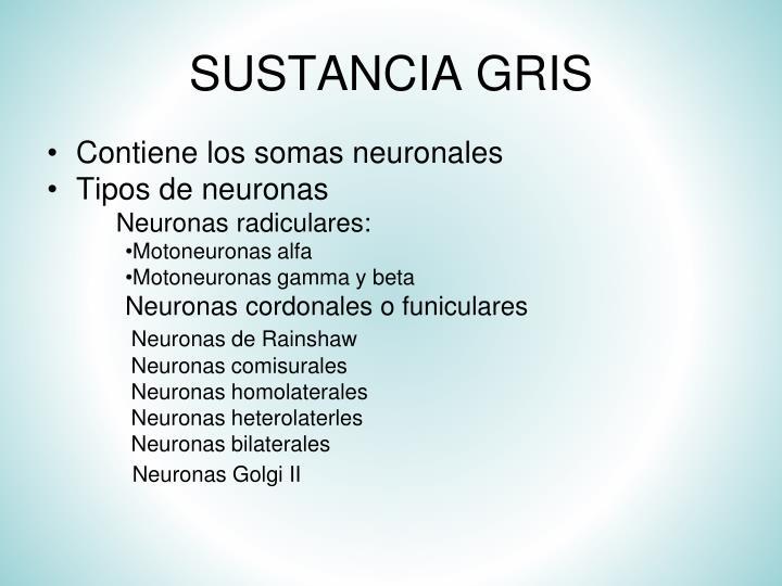 SUSTANCIA GRIS