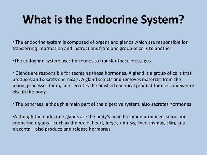 endocrine glands are responsible for
