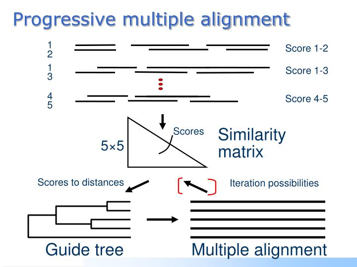 Progressive multiple alignment