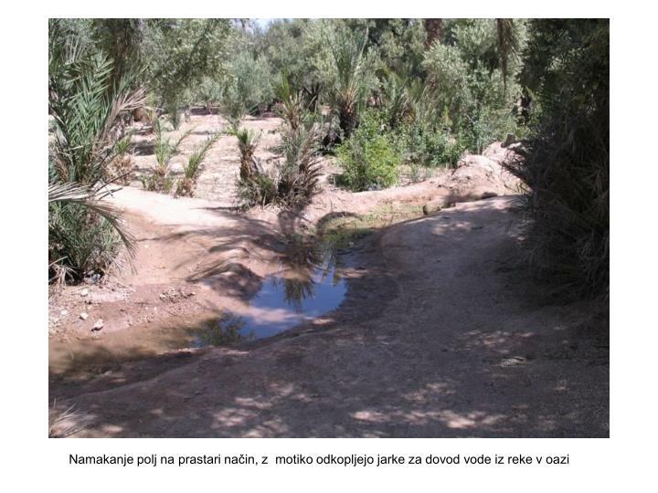 Namakanje polj na prastari način, z  motiko odkopljejo jarke za dovod vode iz reke v oazi