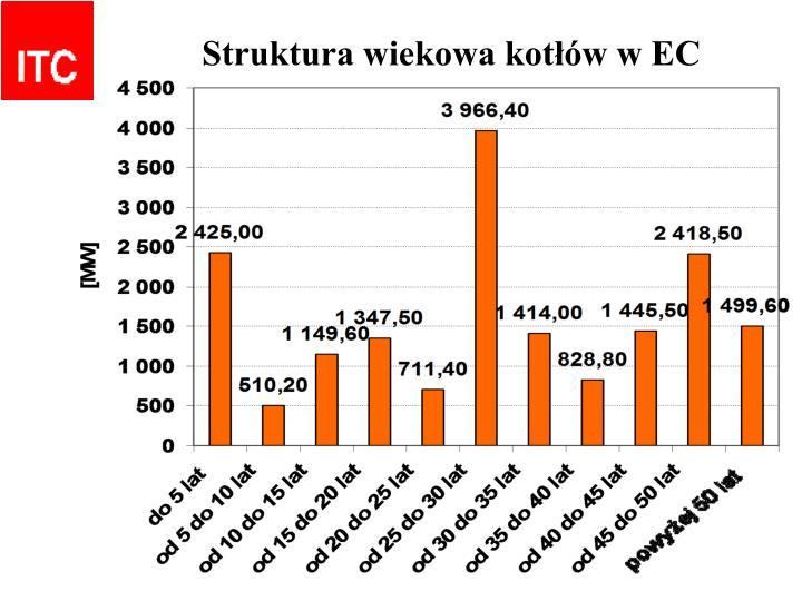 Struktura wiekowa kotłów w EC