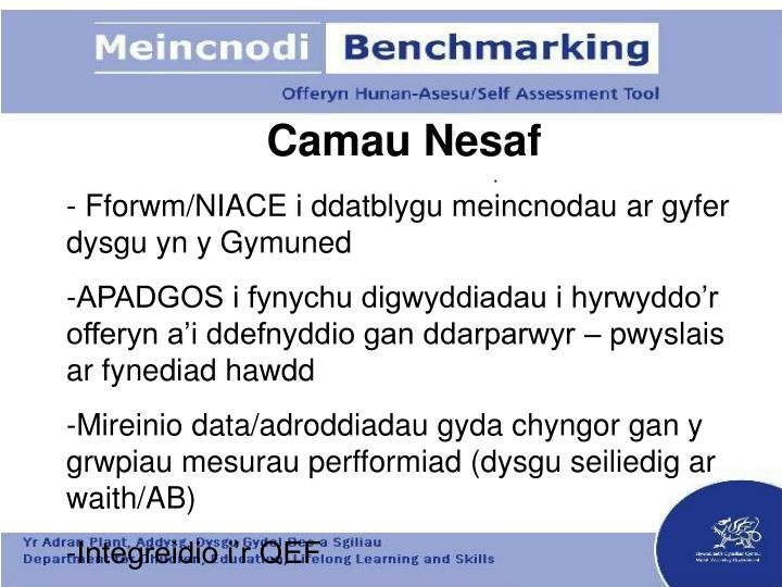 Camau Nesaf