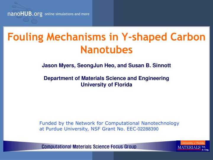 Fouling mechanisms in y shaped carbon nanotubes