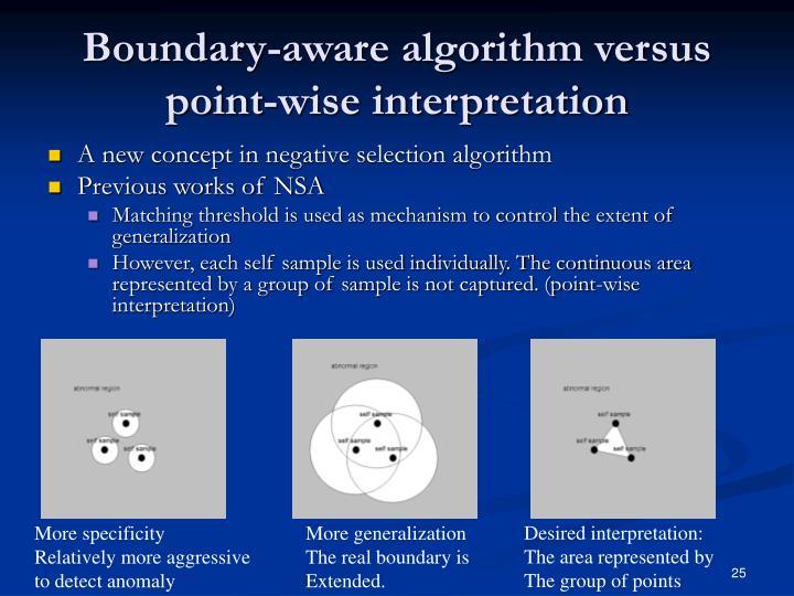 Boundary-aware algorithm versus point-wise interpretation