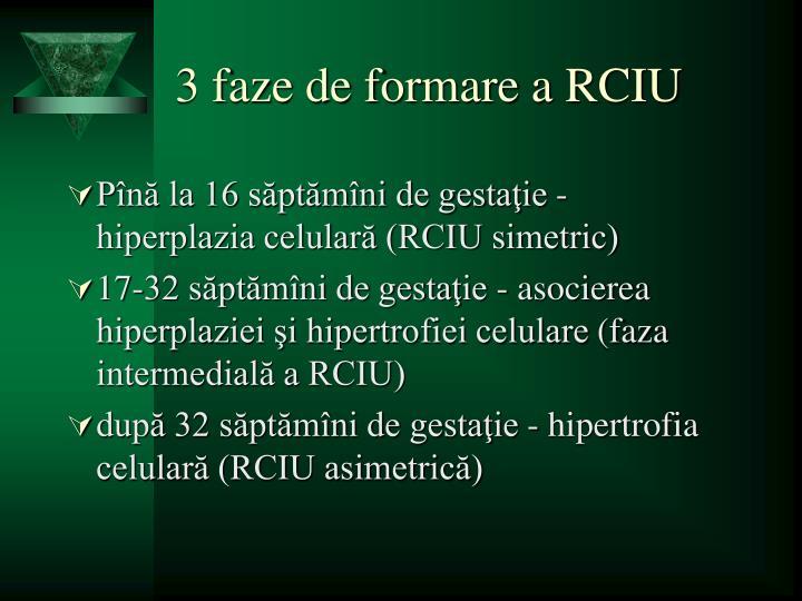 3 faze de formare a RCIU