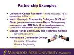 partnership examples