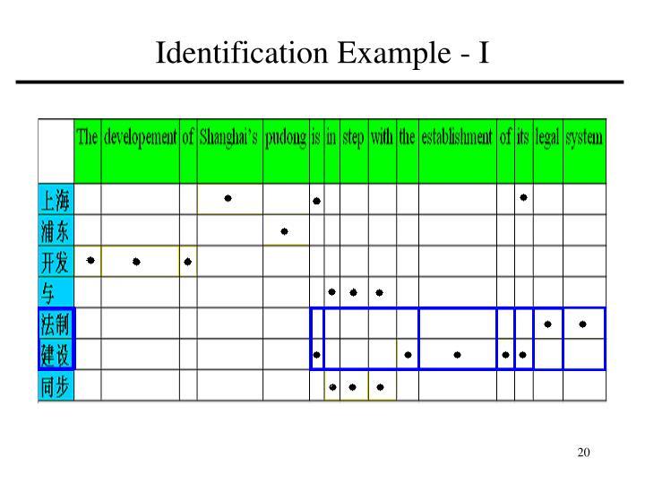 Identification Example - I