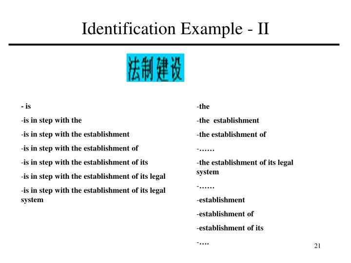 Identification Example - II
