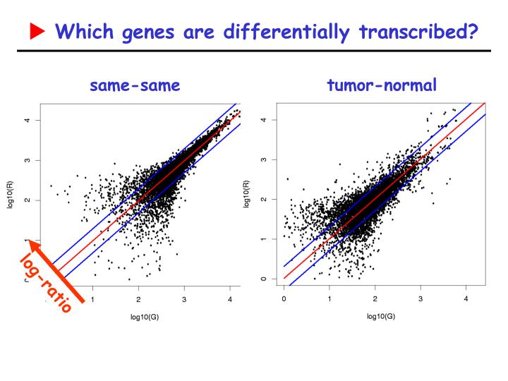 Which genes are differentially transcribed