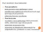 fazy rozwoju pracoholizmu