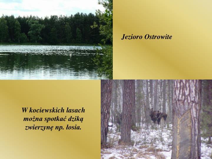 Jezioro Ostrowite