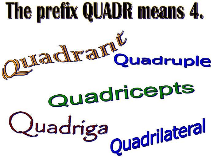 The prefix QUADR means 4.