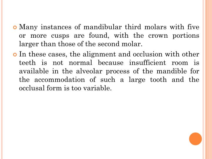 Many instances of mandibular third molars with five or more cusps are found, with the crown portions larger than those of the second molar.