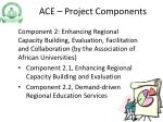 ace project components2