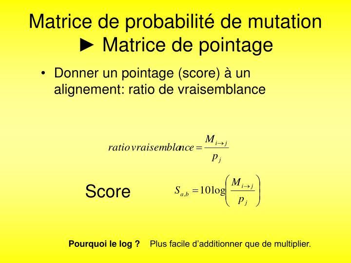 Matrice de probabilité de mutation