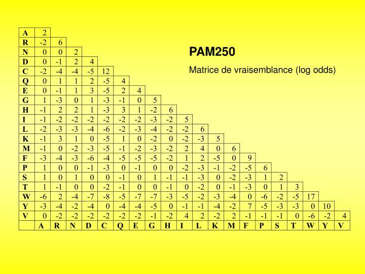 PAM250