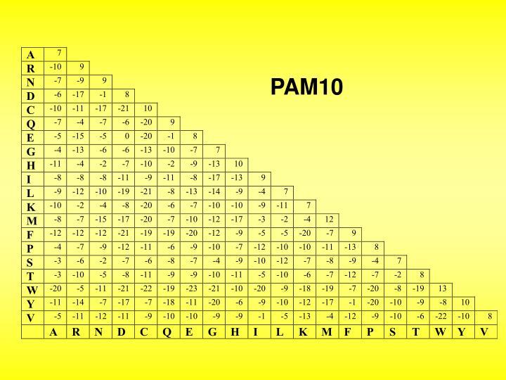 PAM10