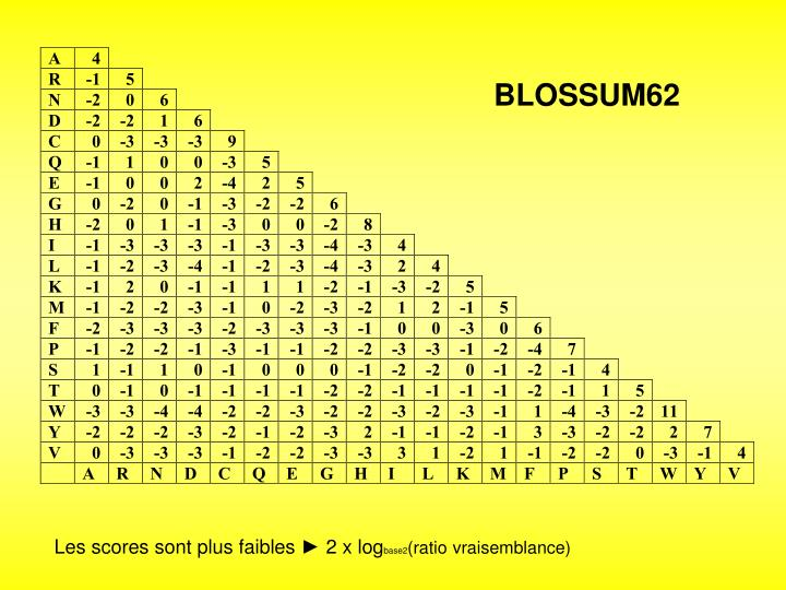BLOSSUM62