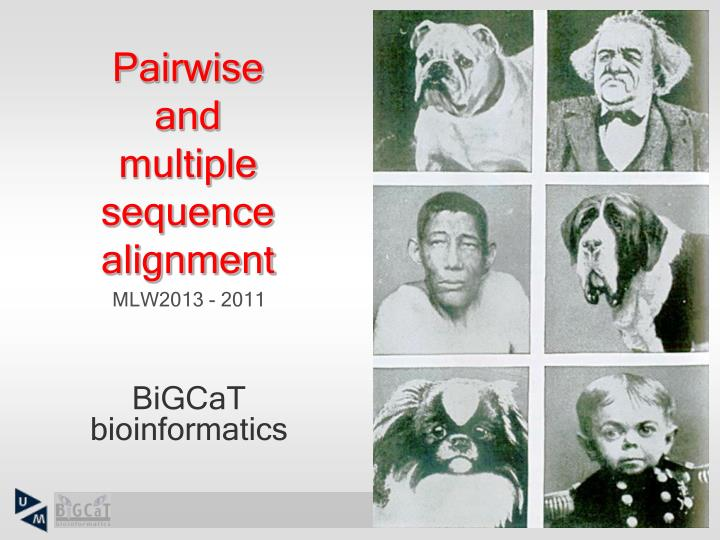 pairwise and multiple sequence alignment n.