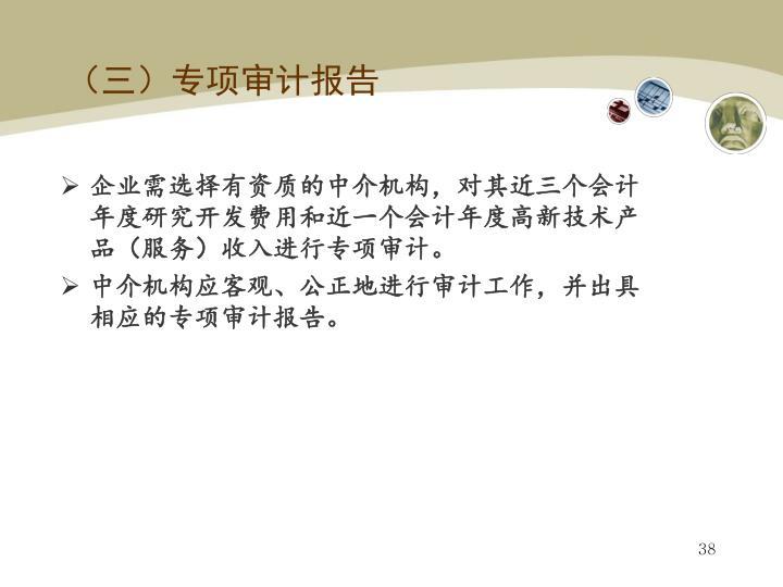 (三)专项审计报告