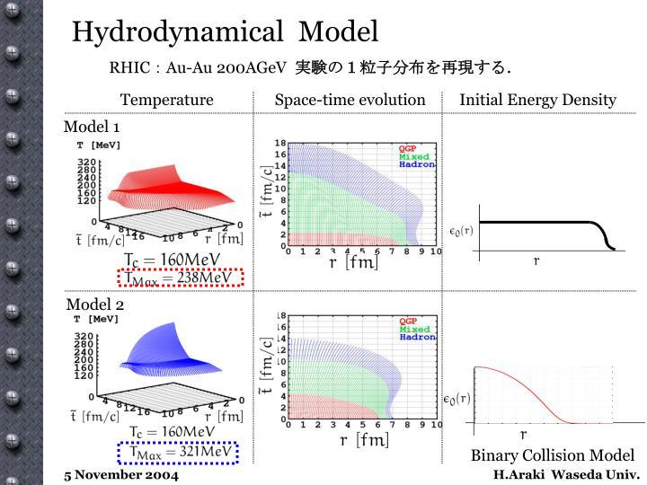 Hydrodynamical  Model