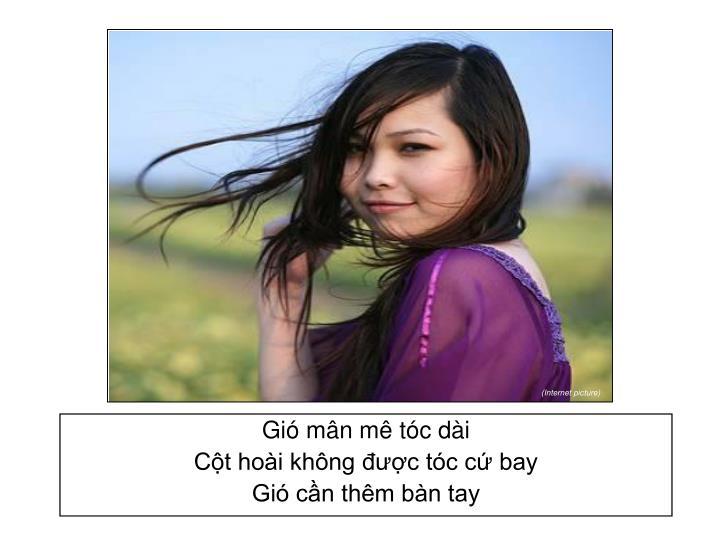 Gió mân mê tóc dài