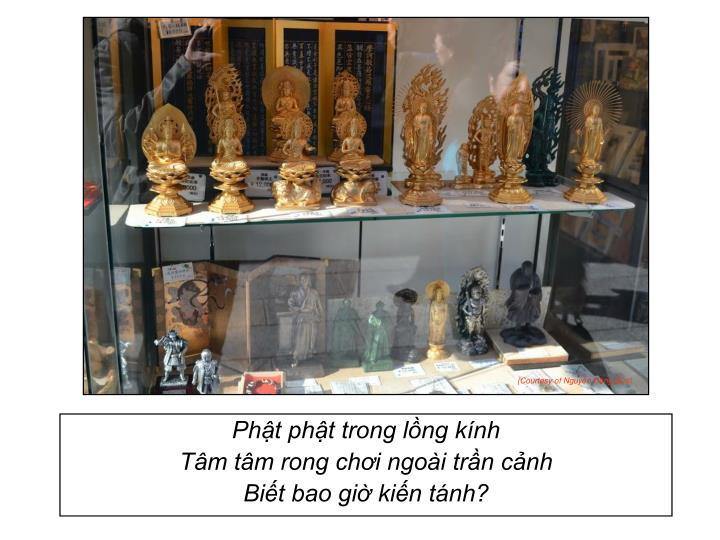Phật phật trong lồng kính