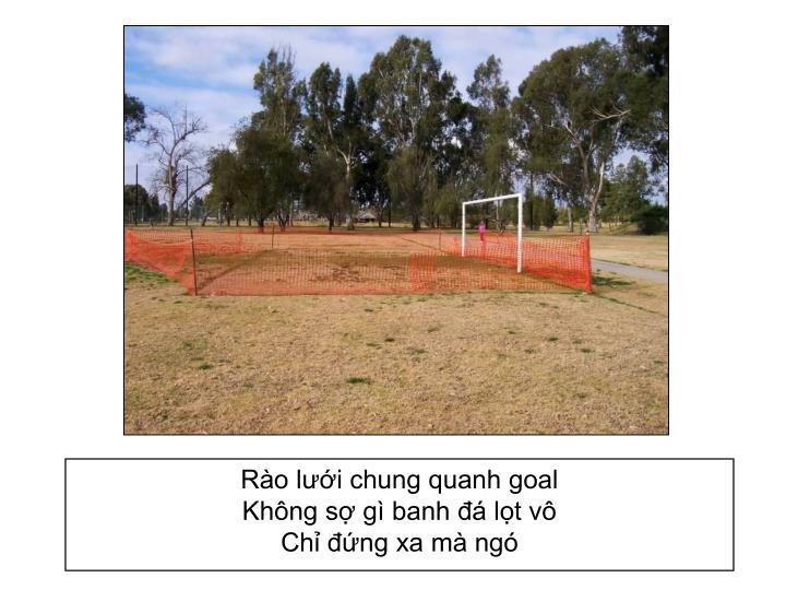 Rào lưới chung quanh goal