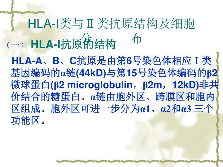 HLA-I