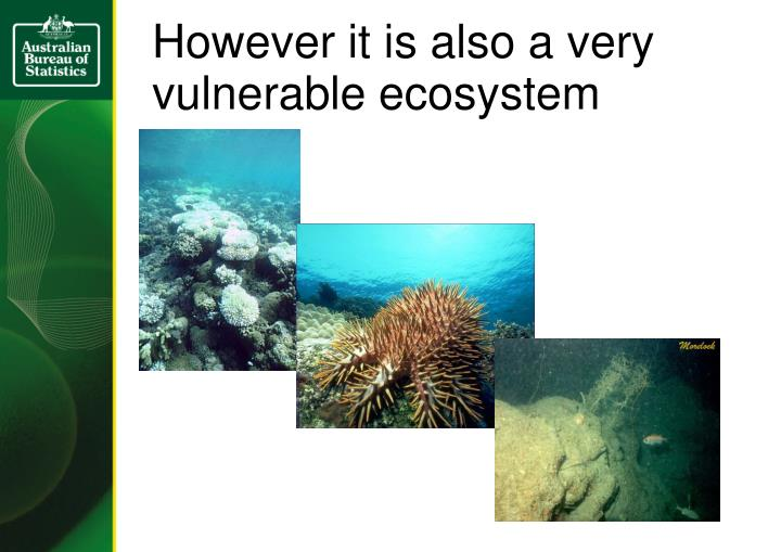 However it is also a very vulnerable ecosystem