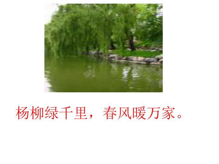 杨柳绿千里,春风暖万家。