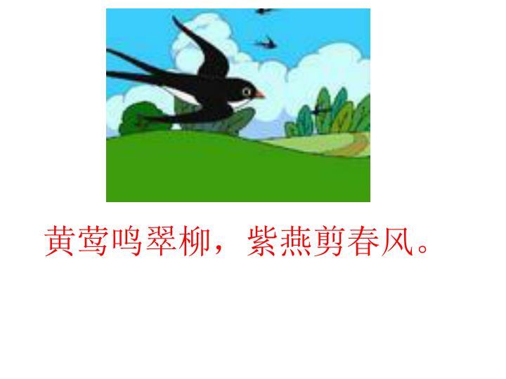 黄莺鸣翠柳,紫燕剪春风。