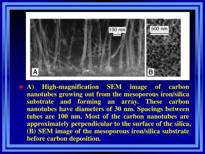 A) High-magnification SEM image of carbon nanotubes growing out from the mesoporous iron/silica substrate and forming an array. These carbon nanotubes have diameters of 30 nm. Spacings between tubes are 100 nm. Most of the carbon nanotubes are approximately perpendicular to the surface of the silica. (B) SEM image of the mesoporous iron/silica substrate before carbon deposition.