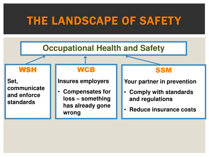 The Landscape of Safety