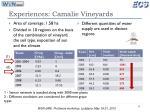 experiences camalie vineyards