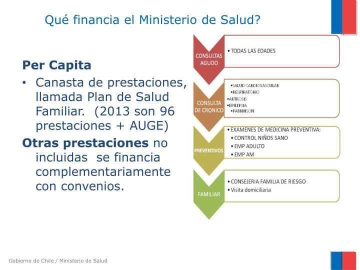 Qué financia el Ministerio de Salud?