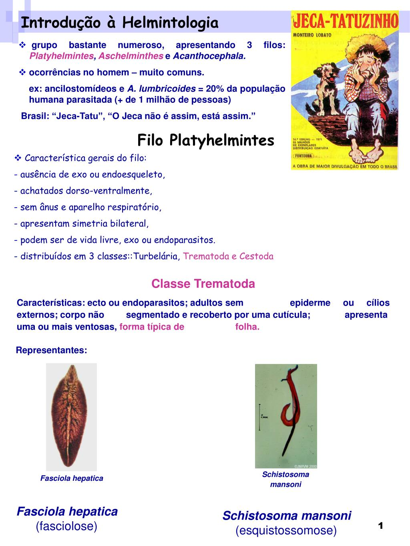 ppt helmintológia