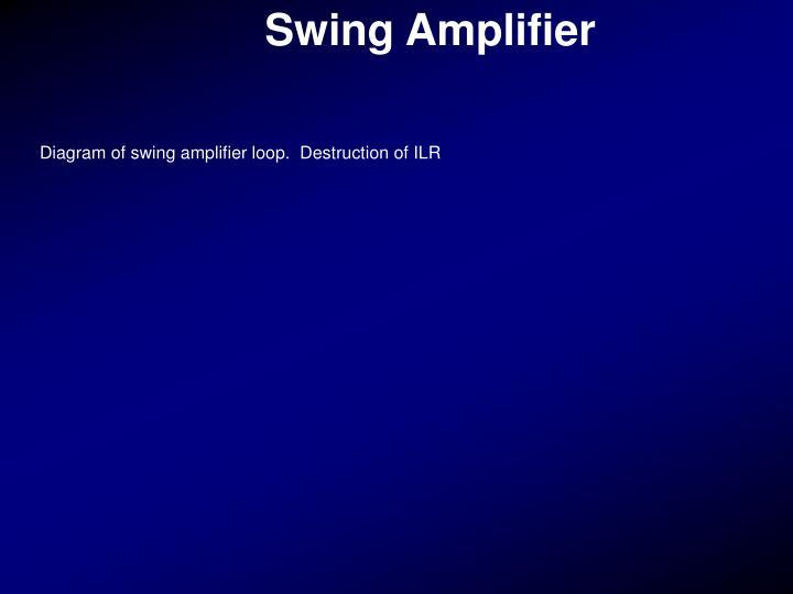 Swing Amplifier